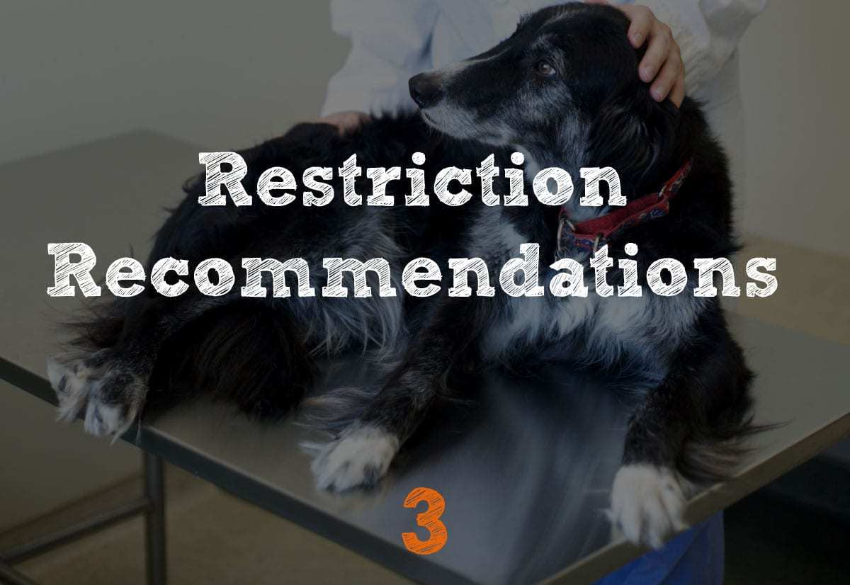 TPLO Recovery Restrictions