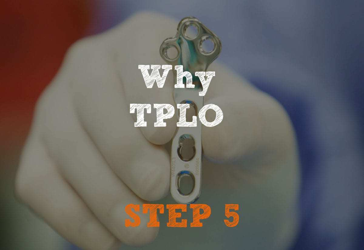 Why TPLO